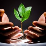 Razvoj poduzetničkog pothvata